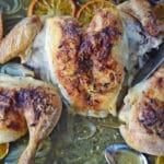 Roast Spatchcocked Chicken