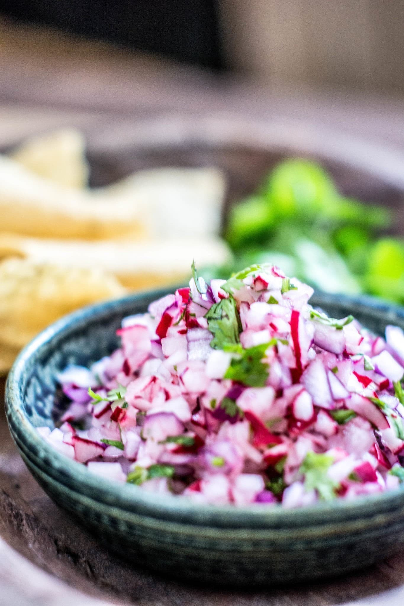 It's so easy to make and has an amazing flavor, Radish Pico de Gallo! Get the salsa recipe from Little Figgy Food