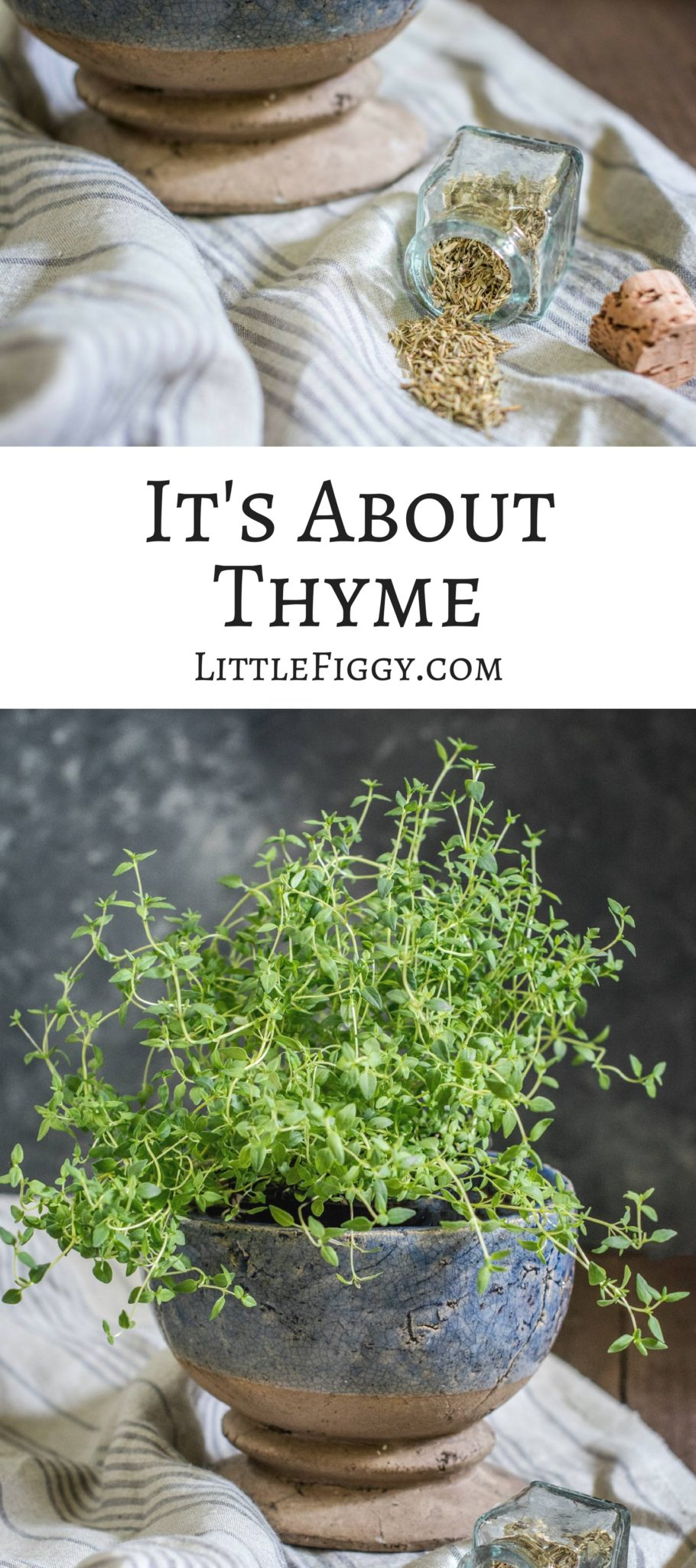 It's About Thyme, tips and ideas on how to use this delicate herb in cooking and medicinally. Also find delicious recipes and more at Little Figgy Food.